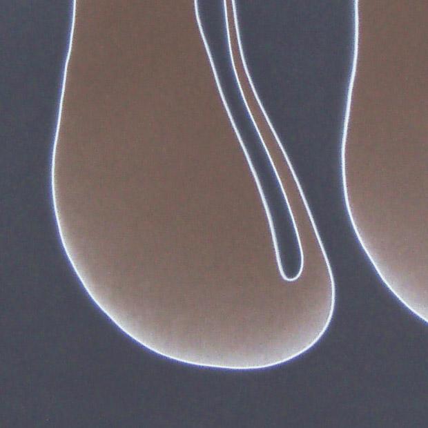 Kannenpflanze_V_Detail.jpg